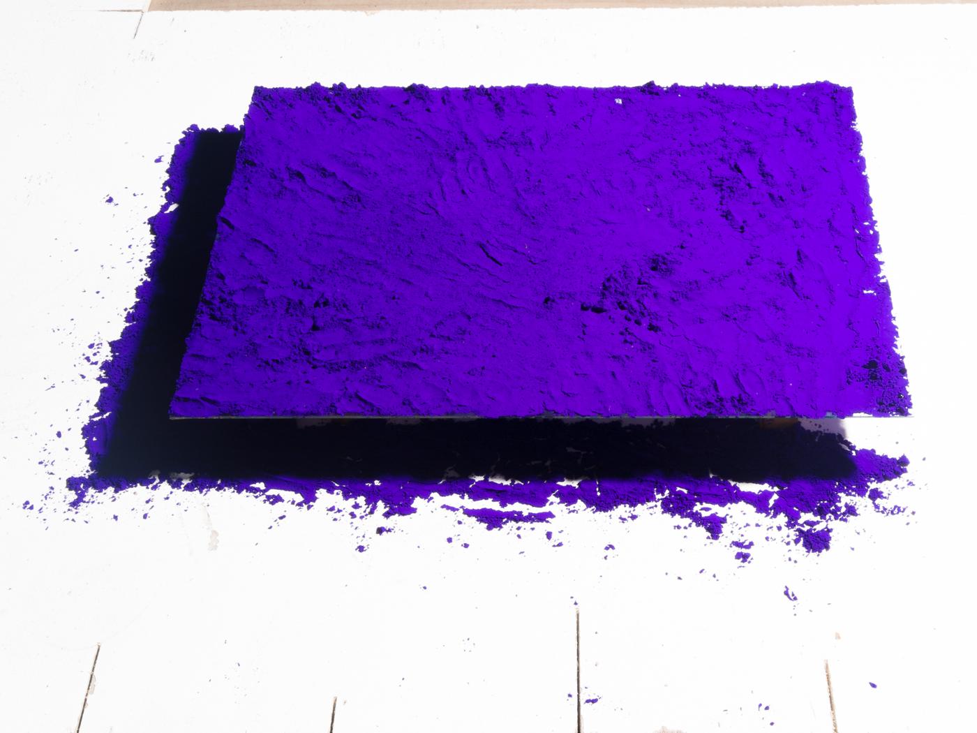 violet-3423
