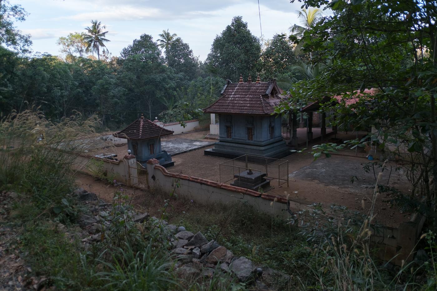 kothala-8588